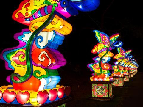 Une série de lanternes colorées à l'occasion de la fête des lanternes chinoises