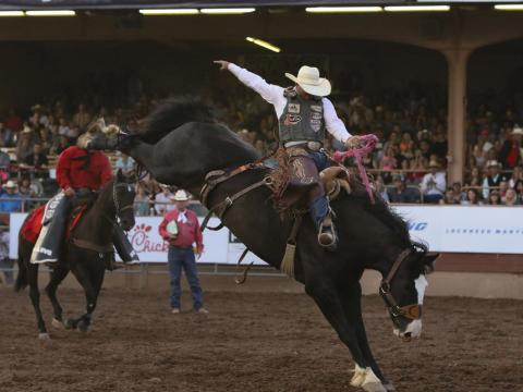 Eight-second saddle bronc riding at Pikes Peak or Bust Rodeo
