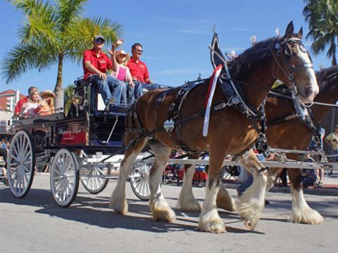 Une balade en calèche à cheval pendant l'événement Edison Festival of Lights